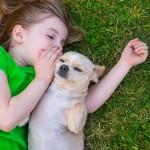 menina-cachorro-grama-animais