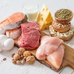 alimentos-fonte-proteina